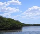 Bahía Portete como una zona prioritaria para su conservación con un 80% de Área Marina Protegida.