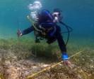 Una Integridad Ecológica de los Ecosistemas Presentes en las AMPs