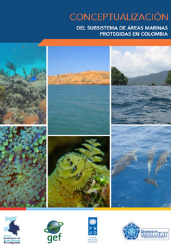 Conceptualización del Subsistema de Áreas Marinas Protegidas